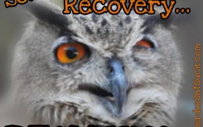 Sober in Recovery…REALLY?!?